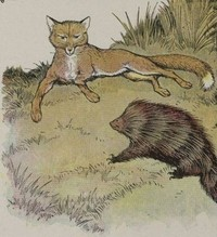 Fox_and_the_hedgehog