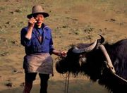 Share_ideas_mongolian_yak_farmer