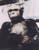 Oliver_humanzee